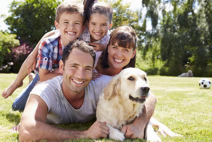 Was ist Tierkommunikation und wie kann das mir und meinem Tier helfen?